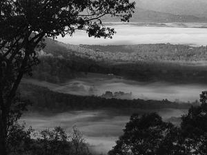 Morning Fog Swirls in the Valley Below on an Autumn Morning in This Black and White View by Amy White Al Petteway