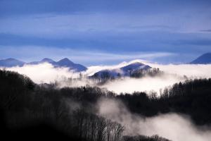 Clouds outline the branches of bare silhouetted trees along several mountain ridges. by Amy White