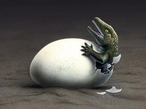 An Early Dinosaur Ancester, Seymouria, Hatches from an Egg