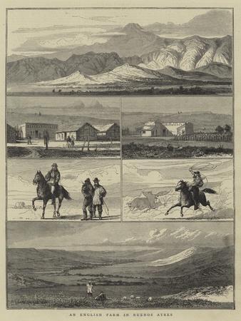 https://imgc.allpostersimages.com/img/posters/an-english-farm-in-buenos-ayres_u-L-PVM9T20.jpg?p=0