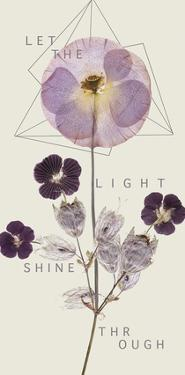 Shine Through by Anahata Katkin
