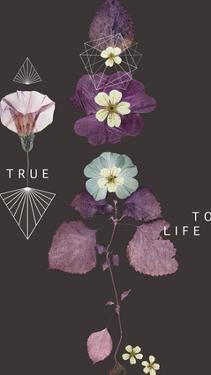 True To Life by Anahata Katkin