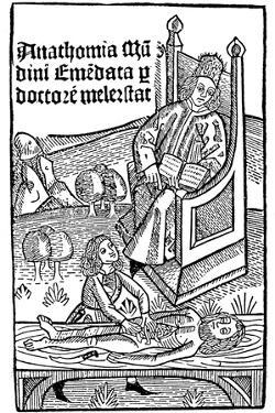 Anatomy Demonstration, 1493