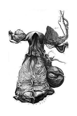 https://imgc.allpostersimages.com/img/posters/anatomy-uterus-18th-c_u-L-PS1ATN0.jpg?artPerspective=n