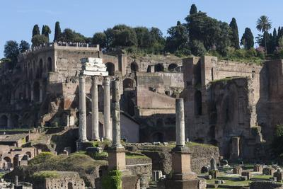 https://imgc.allpostersimages.com/img/posters/ancient-roman-forum-and-the-three-columns-of-temple-of-castor-and-pollux-rome-lazio-italy_u-L-PWFBM80.jpg?p=0