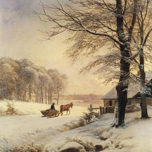Homeward Bound by Anders Andersen-Lundby
