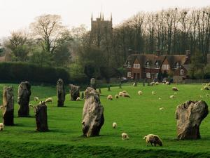 Section of 5500 Year Old Stonecircle Enclosing Village, Avebury, United Kingdom by Anders Blomqvist
