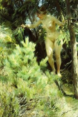 Wood-Sprite, 1892 by Anders Leonard Zorn