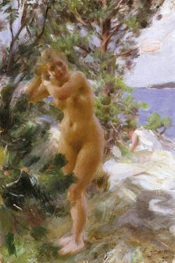 After the Bath by Anders Zorn