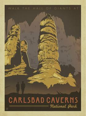Carlsbad Caverns National Park by Anderson Design Group