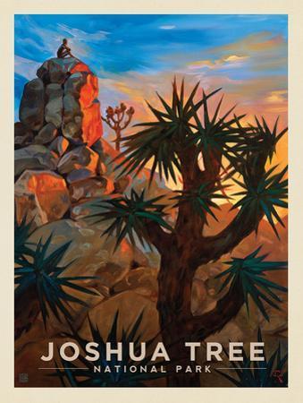 Joshua Tree National Park: Desert Sunrise by Anderson Design Group
