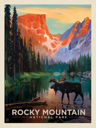 Rocky Mountain National Park: Moose In The Morning by Anderson Design Group