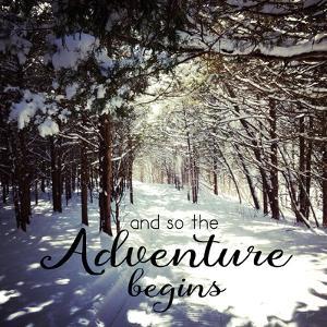 Adventure Begins by Andi Metz