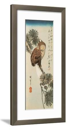 A Little Brown Owl on a Pine Branch with a Crescent Moon Behind by Ando Hiroshige