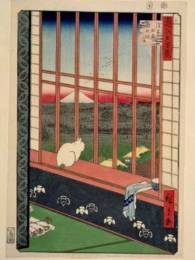 Asakusa Rice Fields During the Festival of the Cock, C.1857 by Ando Hiroshige
