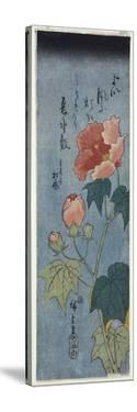 Flowering Poppies, Tanzaku by Ando Hiroshige