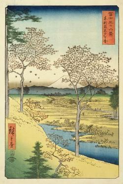 Fuji from Yuhi-Ga, Megwo, No.10 from the Series '36 Views of Mt.Fuji' ('Fuji Saryu Rokkei') by Ando Hiroshige