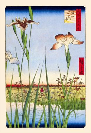 Iris Garden at Horikiri