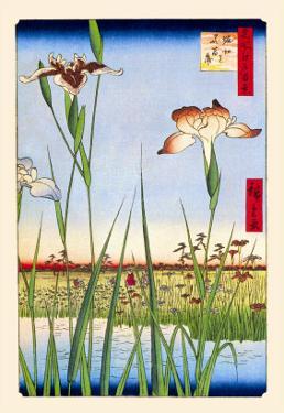 Iris Garden at Horikiri by Ando Hiroshige