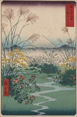 Otsuki Fields in Kai Province by Ando Hiroshige