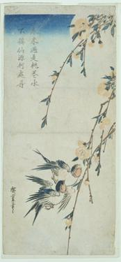 Swallows and Peach Blossom in Moonlight by Ando Hiroshige