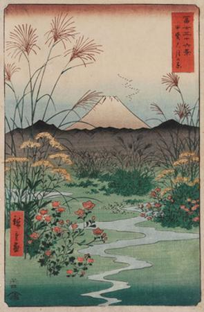 The Coast at Hota, from the series Thirty-six Views of Mount Fuji, 1858 by Ando Hiroshige