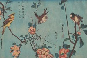 Titmouse and Camellias, Sparrow and Wild Roses and Black-naped Oriole and Cherry Blossoms, c.1833 by Ando or Utagawa Hiroshige