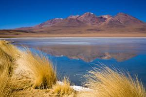 Bolivian Altiplano by Andras Jancsik