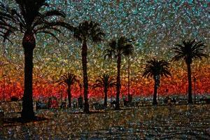 Sunset and Coconut Trees by André Burian