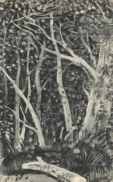 Sous-Bois by Andre Derain
