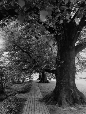 House & Garden - July 1948 by André Kertész
