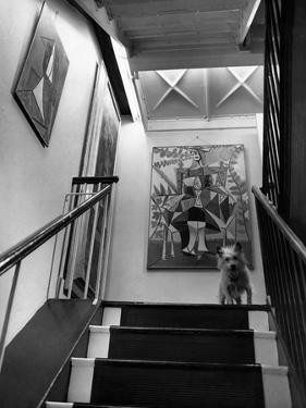 House & Garden - June 1946 by André Kertész