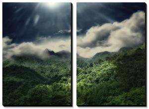 El Yunque National Park by Andrea Costantini