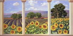 Finestra sui girasoli by Andrea Del Missier