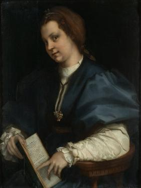 Lady with a Book of Petrarch's Rhyme, 1528 by Andrea del Sarto