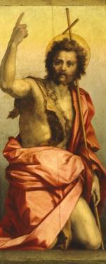 Painting of St John the Baptist by Andrea del Sarto