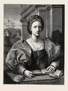 Portrait of a Lady by Andrea del Sarto