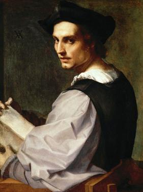 Portrait of a Young Man, 1517 by Andrea del Sarto