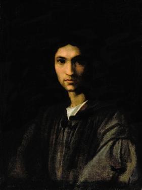Portrait of a Young Man by Andrea del Sarto