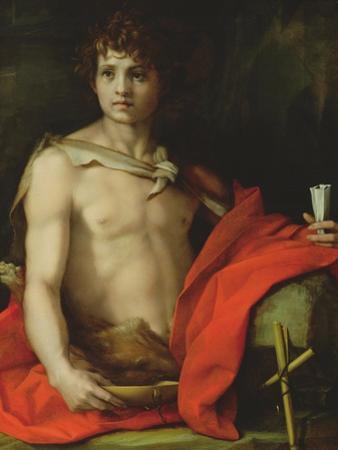 St. John the Baptist, 1522 by Andrea del Sarto
