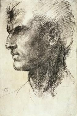 Study of a Male Head by Andrea del Sarto