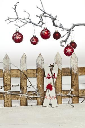 Christmas Decoration and Decoration Fence by Andrea Haase