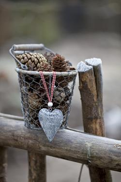 Old Wooden Fence, Bucket, Cone, Heart by Andrea Haase