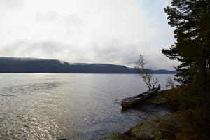 Canoe tour, shore, Lelång Lake, Dalsland, Sweden by Andrea Lang