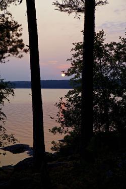 Sundown, Lelång Lake, Dalsland, Götaland, Sweden by Andrea Lang