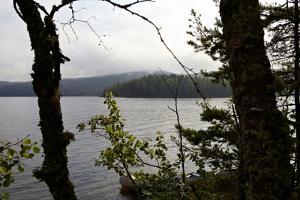 Wild landscape, Lelång Lake, Dalsland, Götaland, Sweden by Andrea Lang