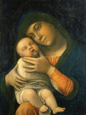 The Virgin and Child, 1490-1495 by Andrea Mantegna