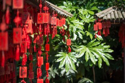 Red Wooden Buddhist Good Luck Charms and Tropical Vegetation, Hangzhou, Zhejiang, China