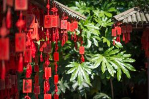 Red Wooden Buddhist Good Luck Charms and Tropical Vegetation, Hangzhou, Zhejiang, China by Andreas Brandl