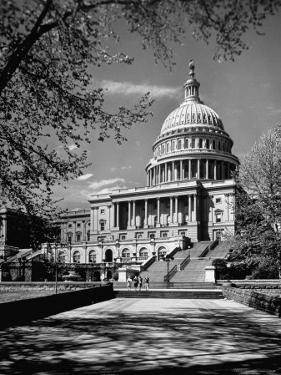 Majestic View of US Capitol Building Framed by Budding Branches of Cherry Trees on a Beautiful Day by Andreas Feininger